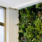 Wonder Wall – Jardins Verticais e Plantas Artificiais
