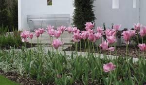 Taman by Cherry Mills Garden Design