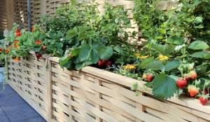 Jardines de estilo minimalista por Quercus UK Ltd