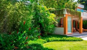 tropical Garden by Landscape Paisagismo