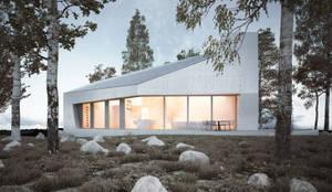 E20: minimalistische Häuser von steimle architekten