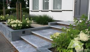 modern Garden by Visser Tuinen