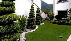 Сады в . Автор – InGarden
