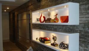Salas / recibidores de estilo moderno por Ana Levy | Arquitetura + Interiores