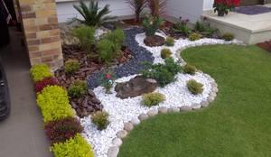 modern Garden by Jardines Paisajismo Y Decoraciones Elyflor