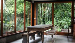 Casa OLIVOS: Jardines de invierno de estilo rural por Arquitecto Alejandro Sticotti