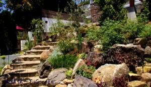 ホビットの庭: 風雅伝~FuGardenが手掛けた庭です。
