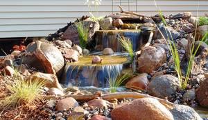 Bio Göl Havuz (Biyolojik Gölet ve Havuz Yapısalları) – Örnek Projeler: kırsal tarz tarz Bahçe