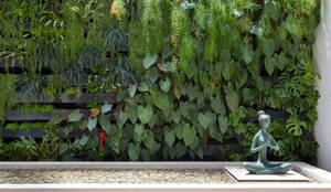 Jardines de estilo moderno por Amanda Miranda Arquitetura