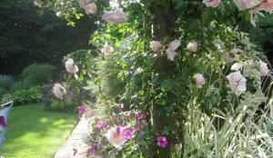 klasieke Tuin door Caroline Benedict Smith Garden Design Cheshire