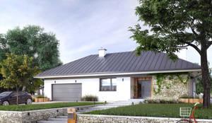 Wizualizacja projektu Feniks 2: styl nowoczesne, w kategorii Domy zaprojektowany przez Biuro Projektów MTM Styl - domywstylu.pl