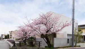 桜と暮らす家: Kenji Yanagawa Architect and Associatesが手掛けた家です。