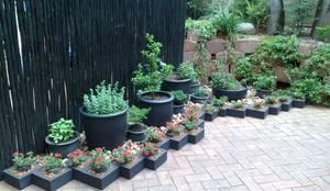 GASPARI: asian Garden by Japanese Garden Concepts