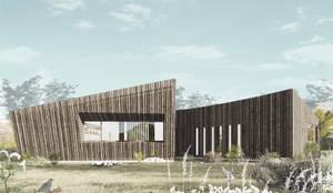 Casa MP: Casas unifamiliares de estilo  por D01 arquitectura