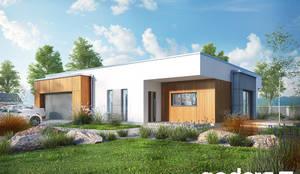 Casa prefabbricata Parrotia: Casa prefabbricata  in stile  di Domus Green