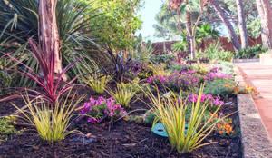 Detalle del parterre lateral a la casa: Jardines de estilo  de Nosaltres Toquem Fusta S.L.