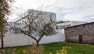 Diseño de 4 Viviendas con Patio en La Plata por por SMF Arquitectos: Casas unifamiliares de estilo  por SMF Arquitectos  /  Juan Martín Flores, Enrique Speroni, Gabriel Martinez