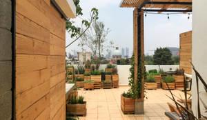 Acceso: Terrazas de estilo  por Boceto Arquitectos Paisajistas,