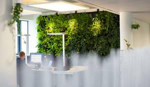 Begrünte Wände :  Bürogebäude von Kaldma Interiors - Interior Design aus Karlsruhe,