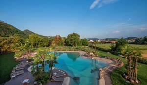 Piscina interrata naturale : Piscina a sfioro in stile  di Balsamini Gardens & Pools Design, Moderno
