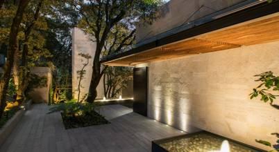 Rhyzoma—Arquitectura y Diseño