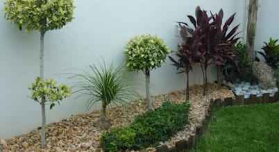Vivero cumbres elite dise adores paisajistas en monterrey for Homify jardines pequenos