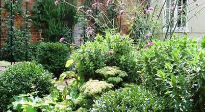 Dawn Isaac Garden Design