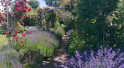 Roger Webster Garden Design - profesjonaliści w kategorii ...