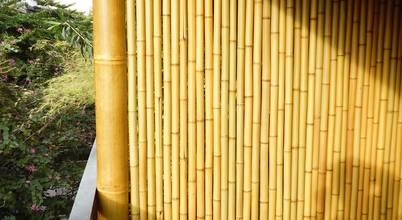 Bambu Rei Eco-Design