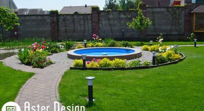 Aster Garden
