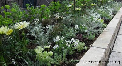 Clover Gartenberatung & Design