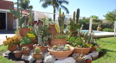 15 jardines pequeños que caben en cualquier esquina