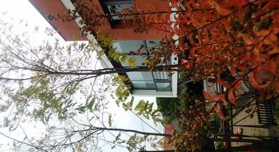 estudio padial gavián.arquitectura y urbanismo,slp
