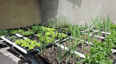 Landschaftsarchitekten in brooklyn for Jardineros ltda