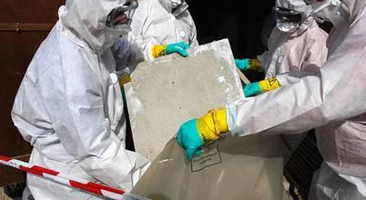 Asbestos Removalists