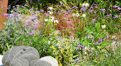 David Keegan garden Design & Landscape Consultancy
