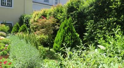 Mistura de cores e de cheiros num jardim no Bairro Alto