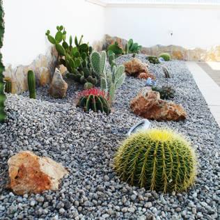 las fotos ms de jardines con piedra
