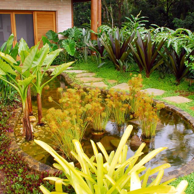 Vườn phong cách nhiệt đới bởi Gil Fialho Paisagismo Nhiệt đới