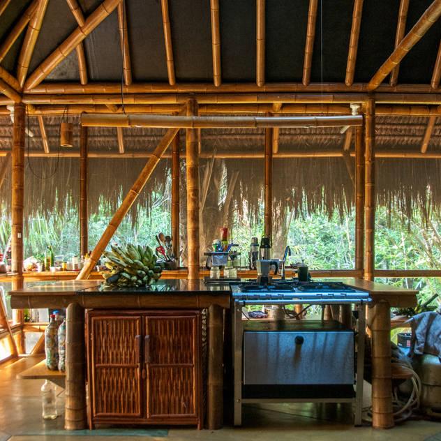 Cozinhas tropicais por IR arquitectura