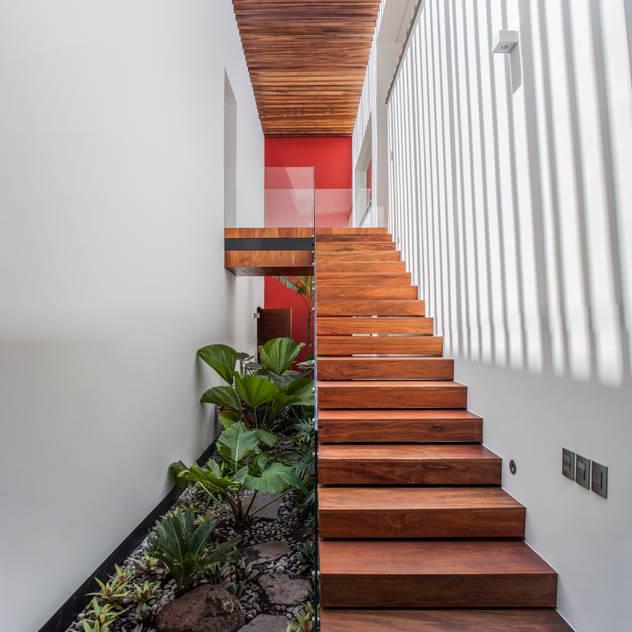 Vườn phong cách chiết trung bởi Almazan y Arquitectos Asociados Chiết trung Bê tông
