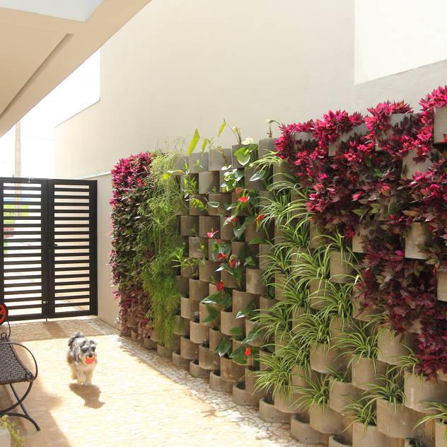 สวน by Taguá Arquitetura+Design