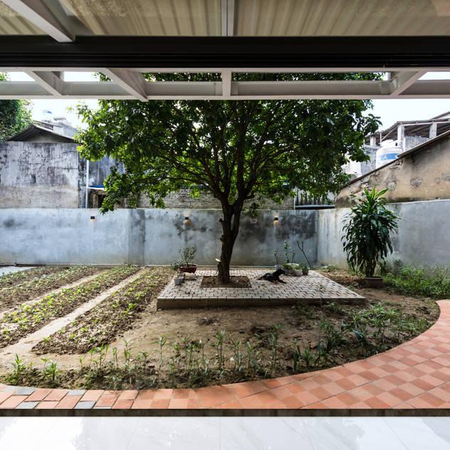 garden Vườn phong cách nhiệt đới bởi AD+ Nhiệt đới