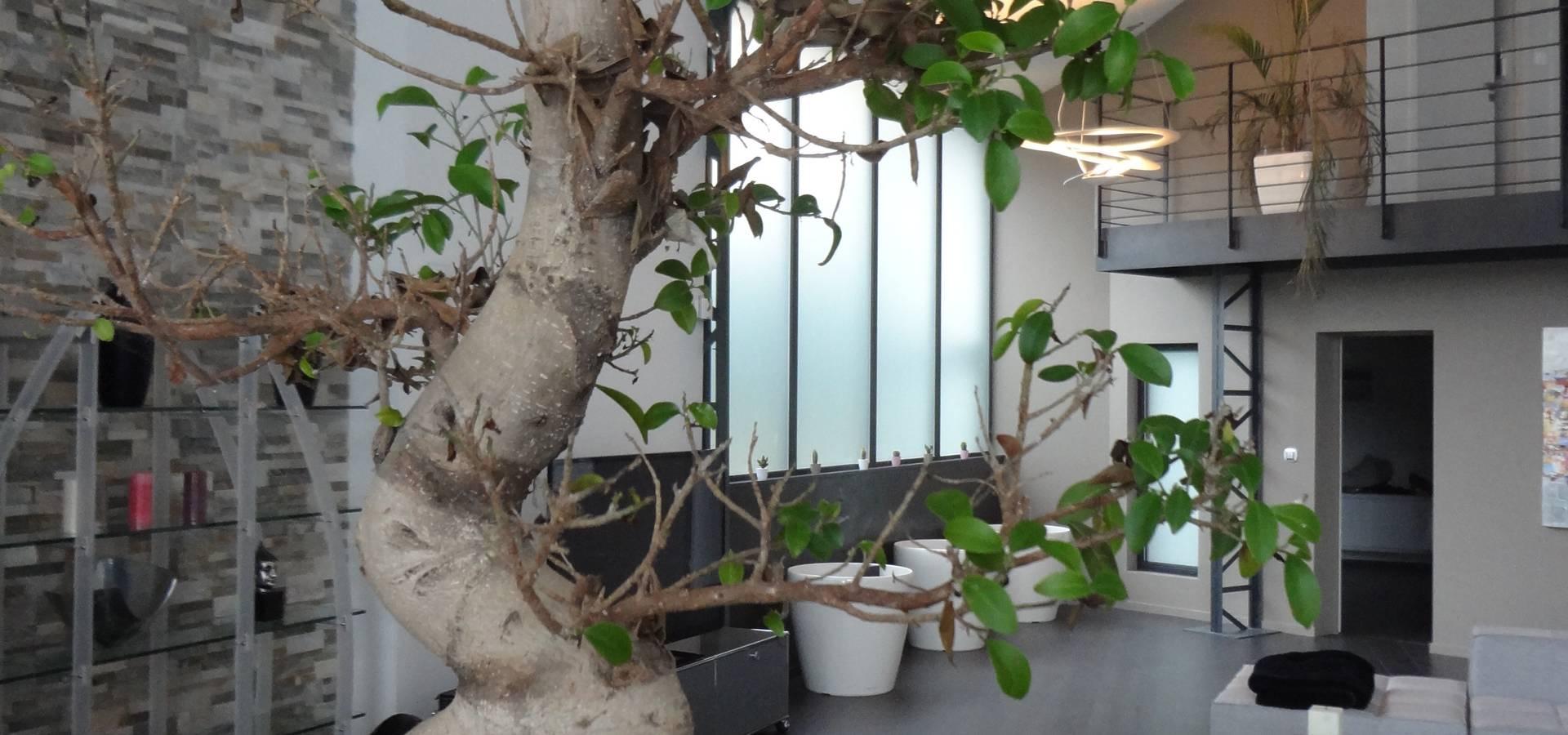 Kjbi deco interior architects in dijon homify for Ancienne maison cutlery