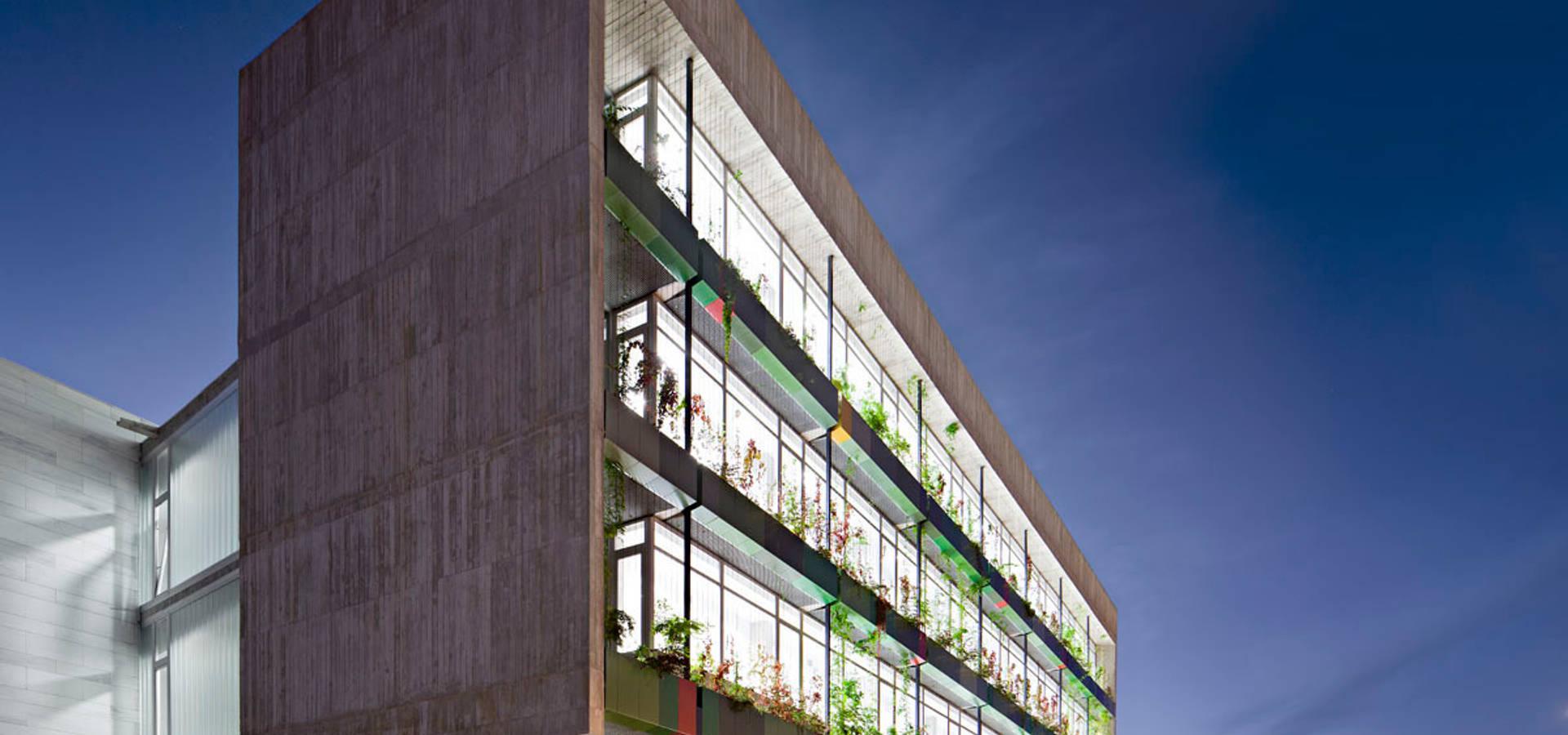 MM-arquitectura
