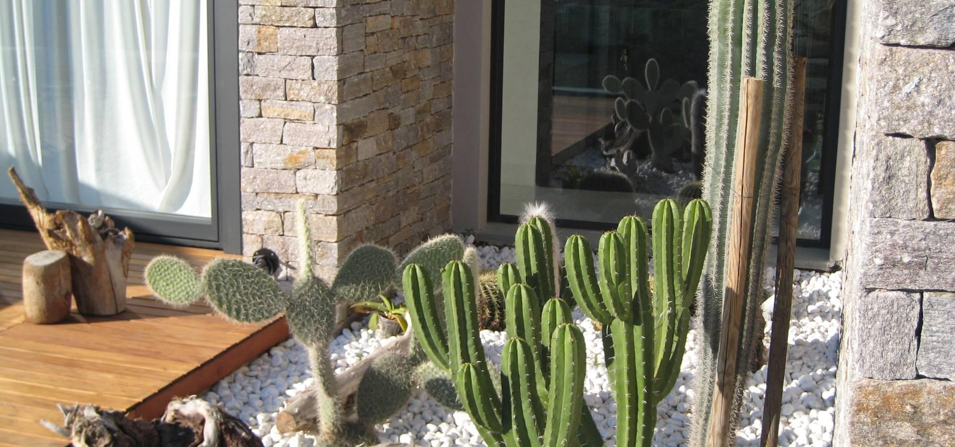 Piante Per Giardini Moderni giardino per una villa moderna di giardini valle dei fiori