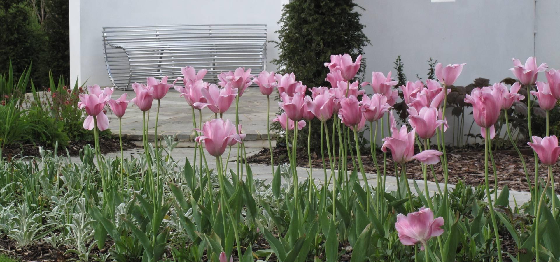 Cherry Mills Garden Design