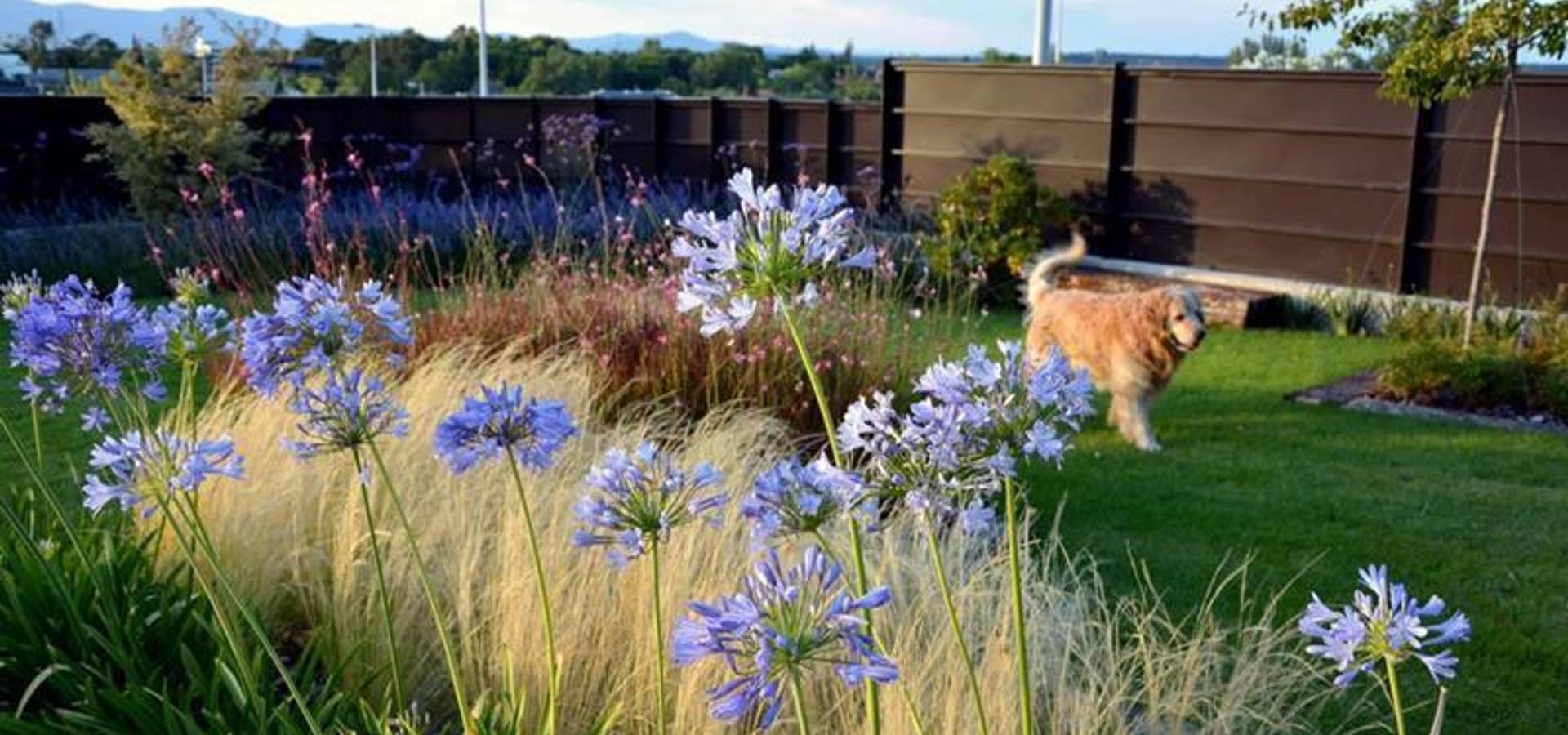 La Paisajista – Jardines con Alma
