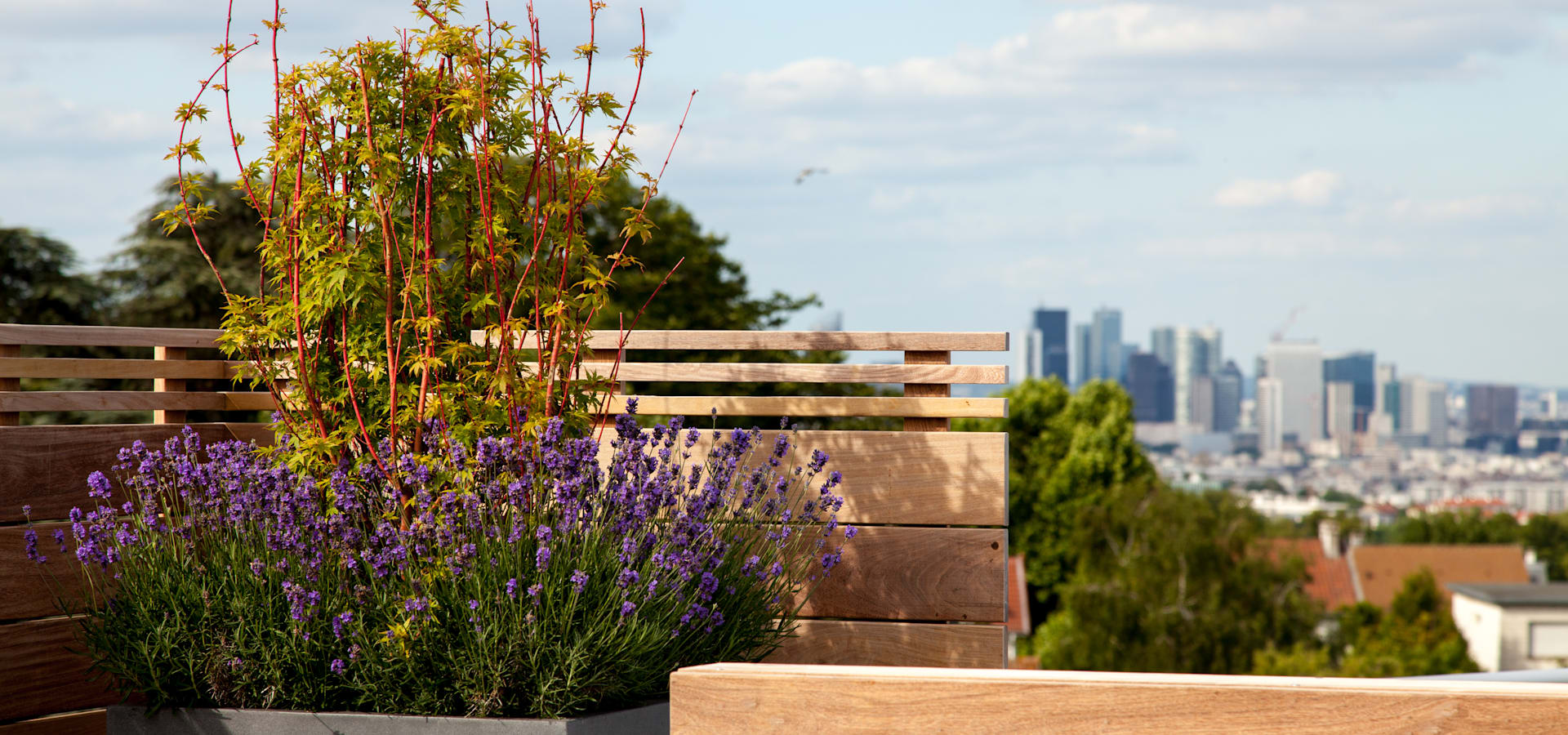 AD Concept Gardens