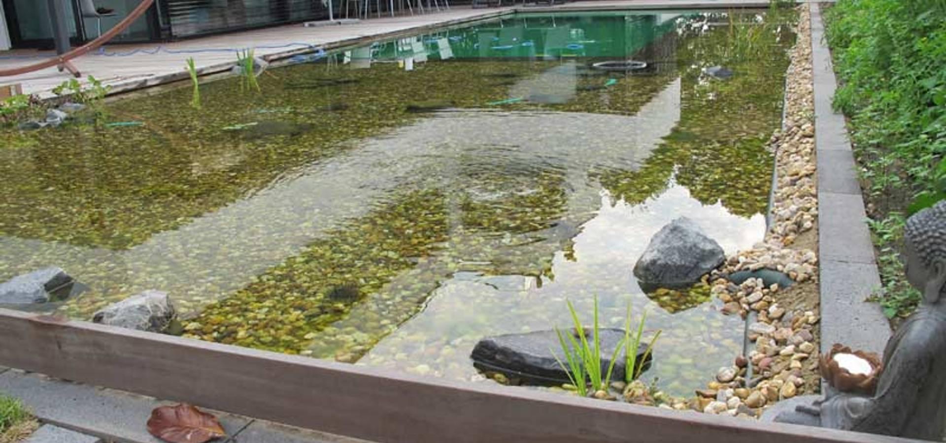 Außergewöhnlich Homify Garten Foto Von Nagelschmitz Garten- Und Landschaftsgestaltung Gmbh